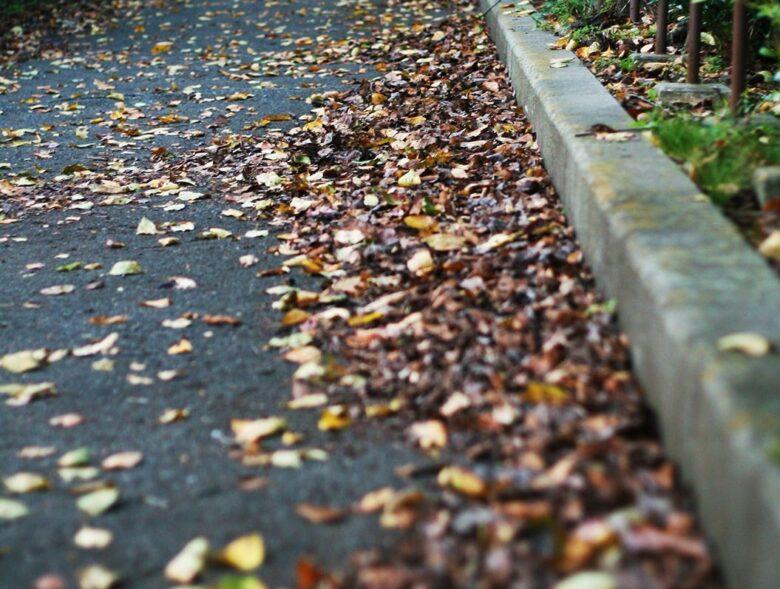 濡れた落ち葉は滑りやすい