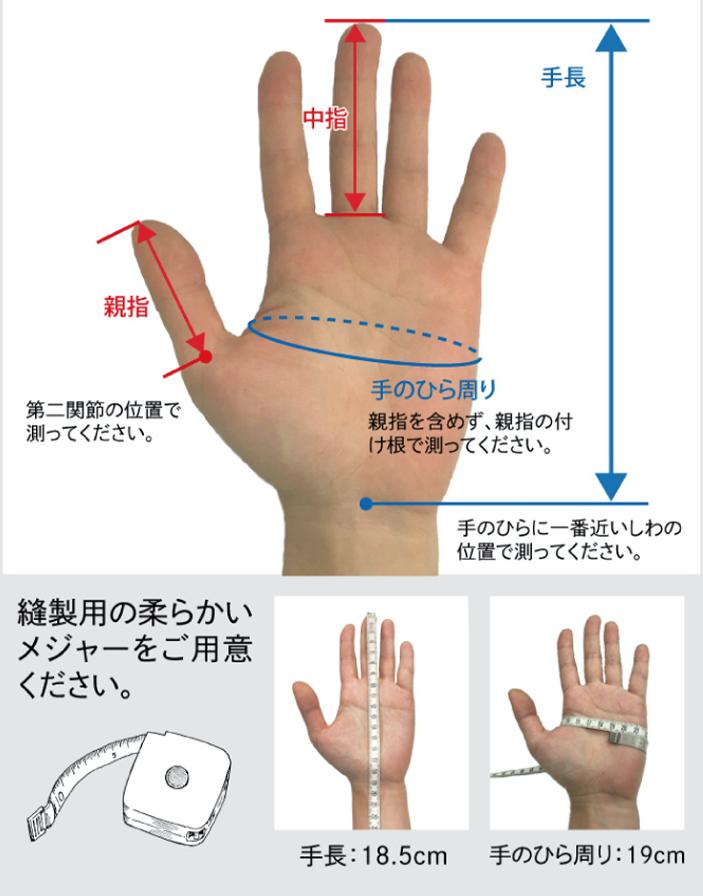 グローブ選びの手のサイズの測り方